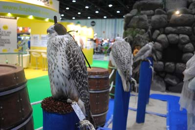 Representatives of the exhibition and forum Industry of Hunting, Fishing and Outdoor Activity attended ADIHEX-2017